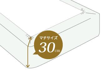 マチサイズ30cm